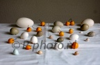 Nikon D70s, 13-12-2012 140, still life with eggs and apples