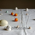 Nikon D70s, 13-12-2012 231, still life with eggs and apples